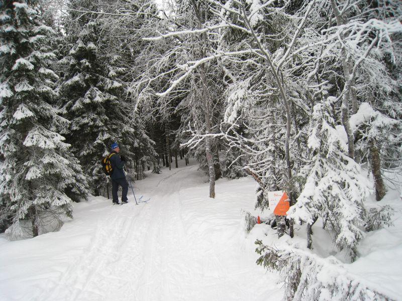 Skijegern Østmarka OK