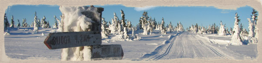 Familiesamling på Budor Østmarka OK