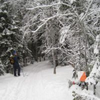 Klar for Skijegern i Østmarka