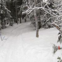 Skijegern arrangeres av Østmarka orienteringsklubb